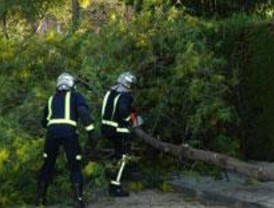 Los Bomberos realizan 126 intervenciones a causa del viento