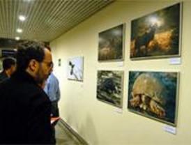 Madrid reunió en 2006 más del 25% de las exposiciones celebradas en España