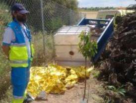 Muere al aplastarle la cuba de su tractor en Belmonte de Tajo