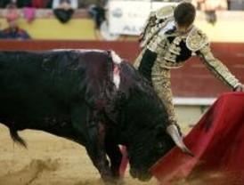 Castella recoge el Premio a la Mejor Faena de San Isidro 2007