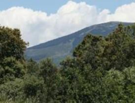 La senda de la Rinconada se celebrará con una marcha por la Sierra del Rincón