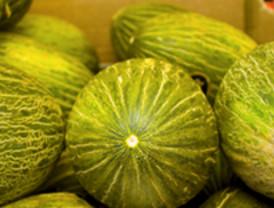 Tratamiento de la alergia al melón