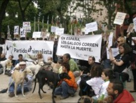 Un centenar de personas piden erradicar la caza con galgos en España