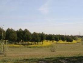 Dos millones de euros para mantener el Parque de Polvoranca de Leganés