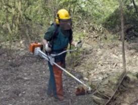 24 jóvenes en riesgo de exclusión aprenden a prevenir incendios