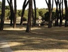 Nuevos parques para Madrid