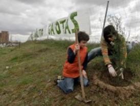 Los vecinos de Carabanchel protestan contra la ampliación de la M-40 plantando árboles
