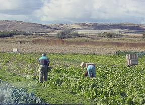 El IMIDRA formará a más de 400 agricultores para mejorar la competitividad y rentabilidad de sus explotaciones