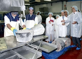 Entregan 6,7 toneladas de atún ilegal a entidades sociales