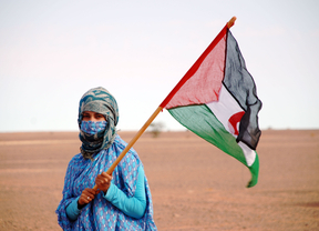 CEAS-Sahara denuncia, por quinta vez, la venta de armas de España a Marruecos