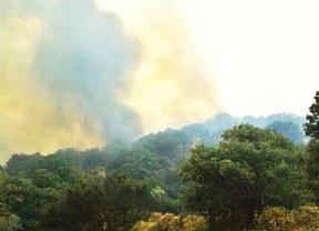 Los bomberos dan por controlado el incendio forestal en Chapinería