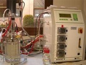 Microorganismos para un gasóleo menos contaminante