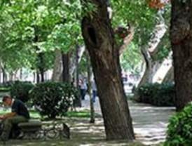 Mejoras en las zonas verdes de Villaverde