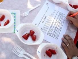 Un proyecto de la Comunidad busca potenciar y mantener la esencia del tomate madrileño
