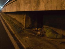 300 voluntarios contarán este martes a los 'sin techo'