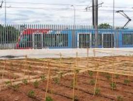 Un huerto solidario en el Metro Ligero