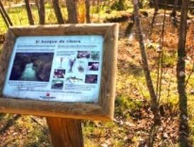 La primavera trae 250 actividades para conocer la naturaleza de la región