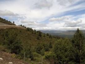 Sendas y rutas guiadas en la reserva de la biosfera Sierra del Rincón