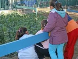 La capital estudia habilitar espacios para huertos urbanos