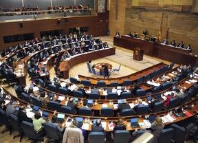 La Mesa de la Asamblea acuerda por unanimidad hacer públicas las cuentas de los grupos parlamentarios