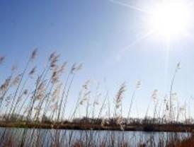 Polémica protección para el Parque del Sureste