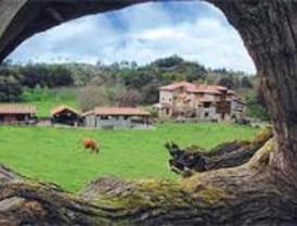 La Comunidad promueve 140 proyectos rurales en cuatro años