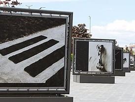 Alcobendas saca el arte a la calle