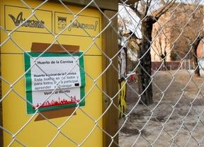 Los huertos municipales pagarán el agua tras rechazar estar patrocinados