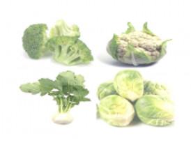 Prevenir el cáncer con vegetales