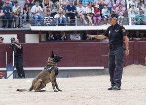 Más de 16.500 escolares y mayores asisten a la exhibición de la Policía Nacional