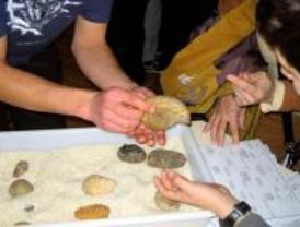 ¿Quiere aprender a identificar fósiles?