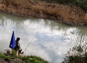 Un pescador en el río Tajo