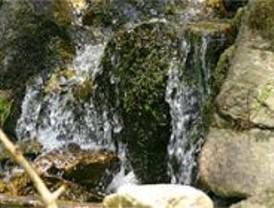 Ecologistas piden preservar del Arroyo de Trofa, en el Parque de la Cuenca Alta del Manzanares