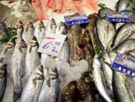 Un informe muestra métodos de detección del anisakis simplex en el pescado