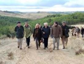 La Comunidad repobla el monte Los Cerros en Alcalá de Henares