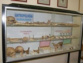 La colección de Zoología y Antropología Física de la Universidad de Alcalá