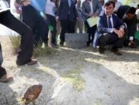 Suelta de 25 ejemplares de galápagos leprosos en una cantera rehabilitada de Navas del Rey