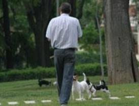 Más de 700 perros participarán en la Exposición Nacional Canina de la Casa de Campo