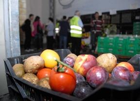 Más de 6.700 nuevos empleados en agricultura en los dos últimos años