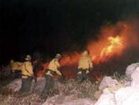 Un 32 por ciento de fuegos intencionados y 47 detenidos por los incendios del 2006