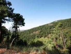 Riesgo elevado de incendios en la Sierra el 'finde'
