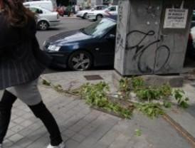 Madrid mantiene la alerta por vientos de 80km/h en la sierra y 75 en el resto