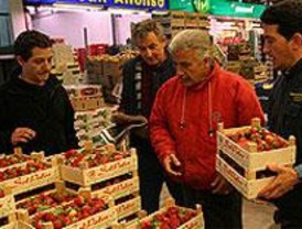 Blázquez culpa a la crisis de la caída de precios y calidad en los alimentos en Mercamadrid