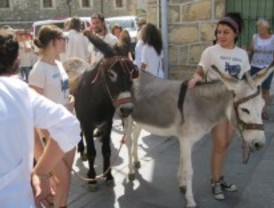 Una 'Caravana de burros' recorre la Sierra Norte