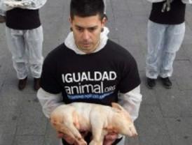 250 activistas exigen derechos para los animales exhibiendo sus cadáveres en la Puerta del Sol