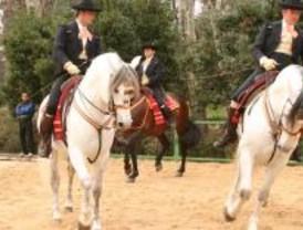 El espectáculo ecuestre 'Cómo bailan los caballos andaluces' llega a Madrid