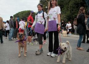 Dos participantes del Perrotón 2014 muestran carteles en apoyo a Excalibur.