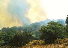 Continúan los trabajos para refrescar la zona del incendio de Chapinería