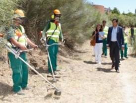 Taller de empleo de reforestación de zonas naturales de Las Rozas