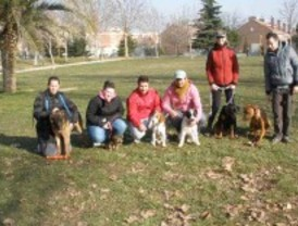 Nace en Getafe la asociación 'Amigos del can'